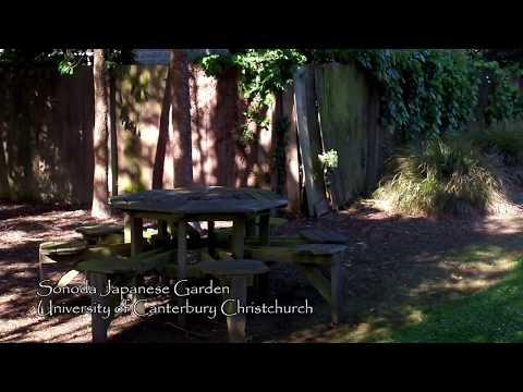 Sonoda Japanese Garden   University of Canterbury Christchurch New Zealand