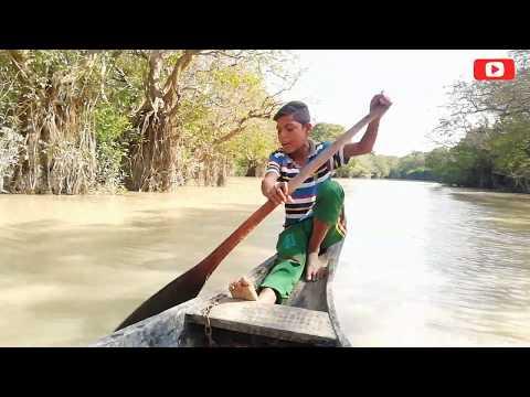 ও ফুরি খও আমারে ভালা ফাও নি | সিলেটি গান | Sylheti Song | Ratargul Swamp Forest