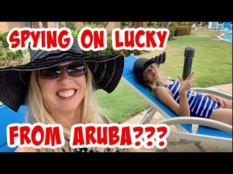 using-the-tesla-mobile-app-to-spy-on-lucky-from-aruba-on-our-summer-vacation