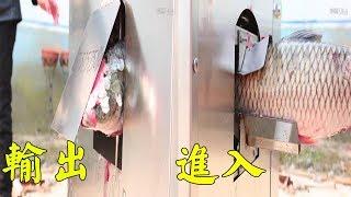 這樣殺魚真是絕了,大叔發明自動殺魚機,30秒刮鱗開膛【發明迷】 thumbnail