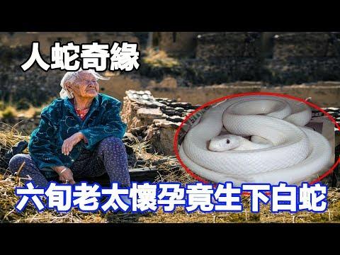 人蛇奇緣?六旬老太懷孕竟生下一條白蛇,嚇壞全村人,結果卻是這樣……