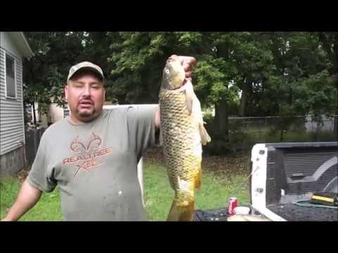 Pesca de carpas para hacerlo al horno