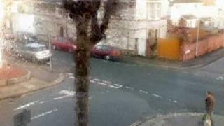 The blackbird sings by my window
