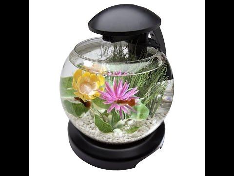 Review:  Tetra 1.8 Gallon Waterfall Globe Aquarium Kit