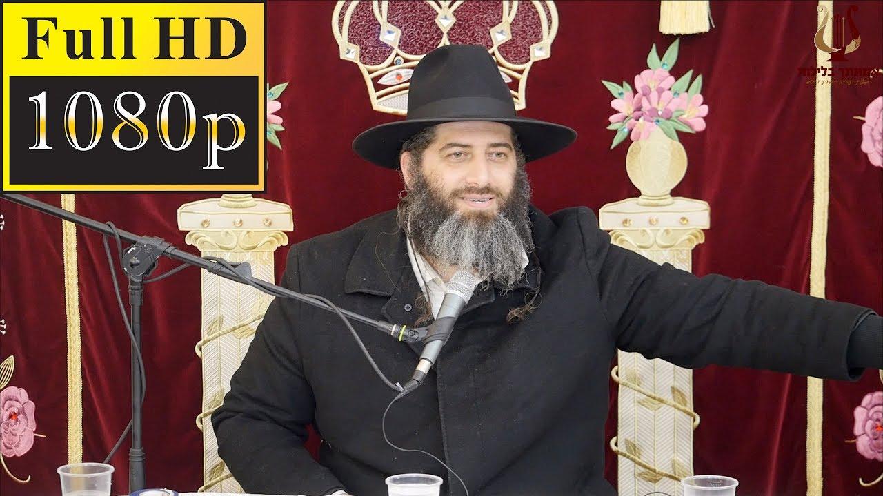 הרב רונן שאולוב - ט״ו בשבט - אדם עץ השדה - זיווגים ופרנסה - מסירות נפש - ירושלים 20-1-2019