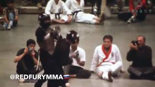 Бой Брюса Ли в ММА