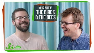 SciShow Quiz Show: The Birds and the Bees ... Literally