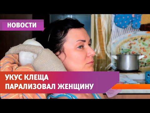 UTV. Укус клеща лишил уфимку бизнеса, мужа и сына