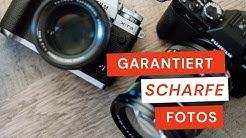 📷 Garantiert scharfe Fotos mit diesen Kamera Einstellungen| Maik Herfurth Fotografie 📷
