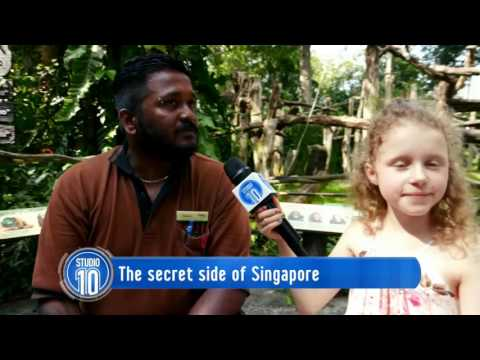 The Secret Side Of Singapore