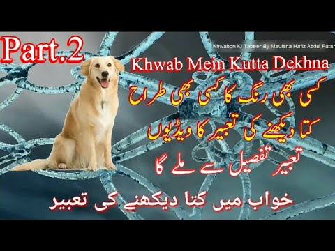 Dog Dream Meaning || Khwab Mein Kutta Dekhna Ki Tabeer || Islamic Dream  Interpretation Part 2