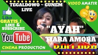 Live New Pallapa Rembang Ayah TIARA AMORA NEW PALLAPA LIVE TEGALDOWO GUNEM REMBANG.mp3
