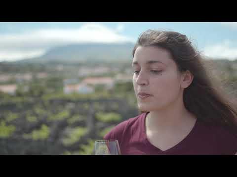 MESA DA MADALENA DO PICO | 7 MARAVILHAS À MESA
