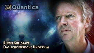 Das schöpferische Universum -- Rupert Sheldrake