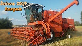Żniwa 2017    Rzepak    Bizon Z056 & Ursus C330    Podkarpacie    