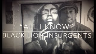All I Know by Black Lion Insurgents