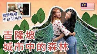 【 Vlog 】吉隆坡之旅Ep4/4 • 繁榮都市內的一片綠洲! | 咖啡山森林保護區 | 吉隆坡機場