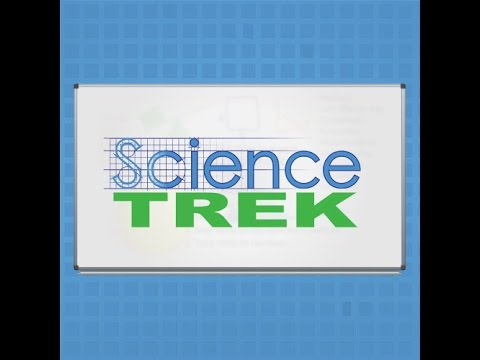 Science Trek: The Food Web