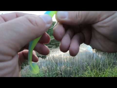 Рыбалка на р.Оредеж (в жабовнике )