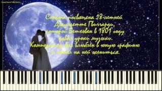 Лунная соната - Л. Бетховен (Moonlight Sonata_Op.27 No.2 Mvt.1-,Beethoven) (piano cover)