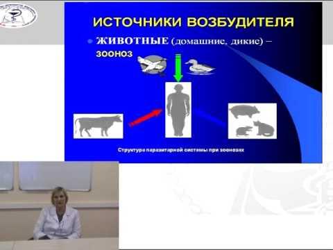 Лекция: «Понятие об эпидемическом процессе».