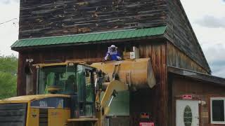 Using heavy equipment to remove a bees nest- too many bees! #bees #heavyequipment #death