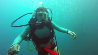 North Carolina Coast Indra Wreck Scuba Diving