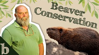 #33 New Nature & Beaver Conservation with Special Guest Derek Gow   The Biome Podcast