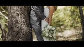 A beautiful Napa wedding under a romantic gnarled walnut tree - Triple S Ranch Napa