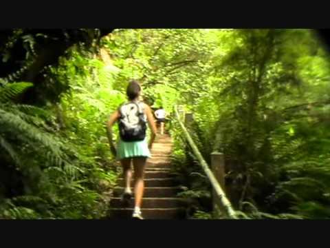 10000 steps melbourne