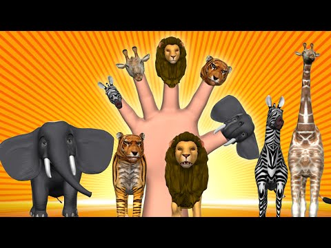 Thumbnail: Animal Finger Family - Finger Family Song - 3D Animation Nursery Rhymes & Songs for Children