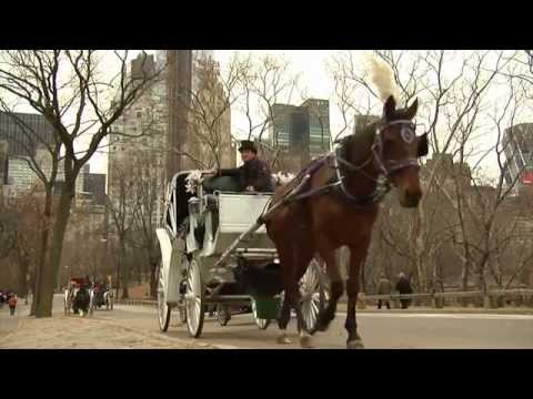 Save NYC Horse Carriages Film - Narrated by Liam Neeson