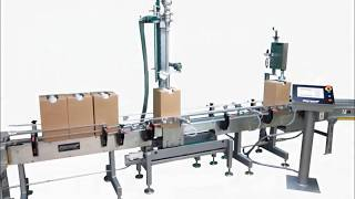 Automatic Net-Weight Filling System