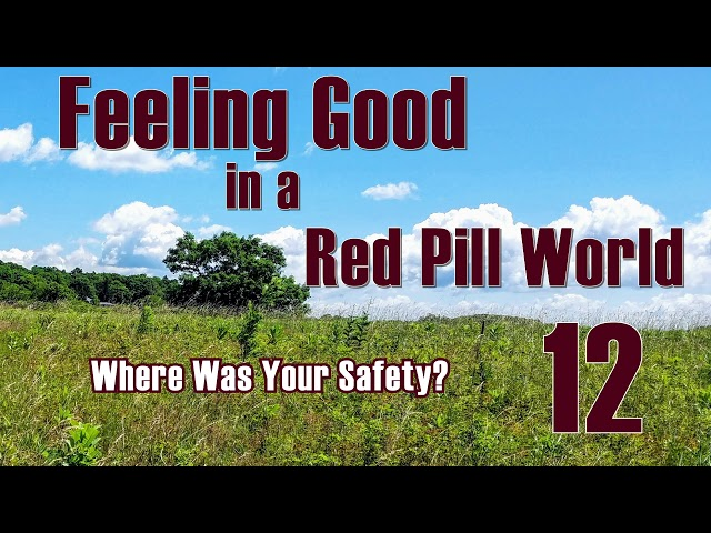 Feeling Good in a Red Pill World . Where was your Safety?