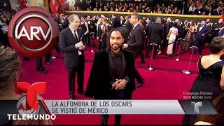 México reinó en la alfombra roja de los Premios Oscar | Al Rojo Vivo | Telemundo