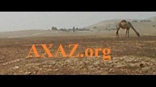 """75. Изучение иврита. Правильный иврит - буква """"аин"""" ע. Урок ведет Марк Харах (Ниран)."""