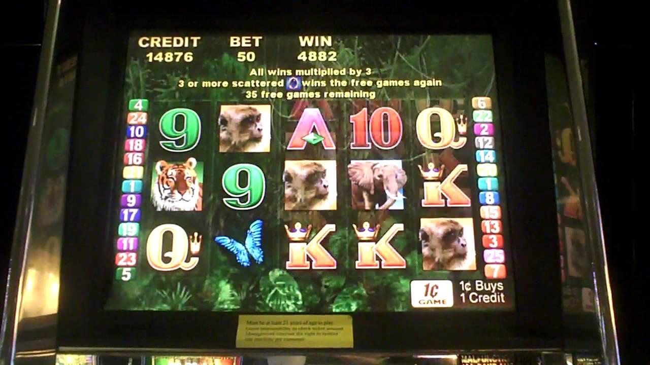 Peacock And Dragon Slot Machine