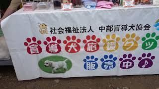 動物愛護フェスティバルinぎふ 2017 ( 2の2 )