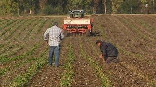 Proyecto Climagri para la conservación de suelos agrícolas