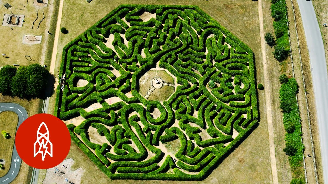 how to make a corn maze