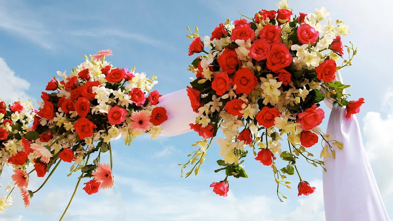 6 tips for picking a wedding arch wedding flowers youtube junglespirit