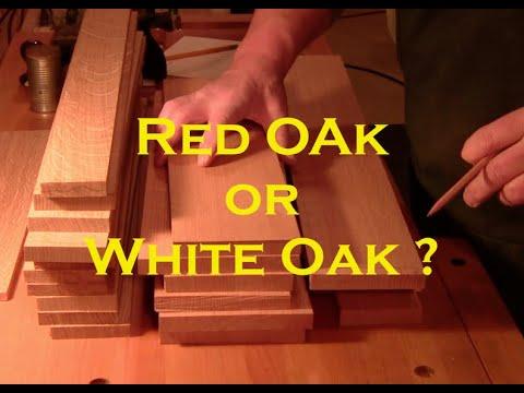 Red Oak vs White Oak - Identify them easily - PLANE TALK - 13 March 2019