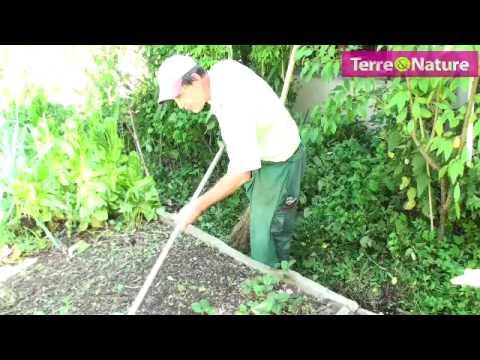comment semer mâches et salades - youtube