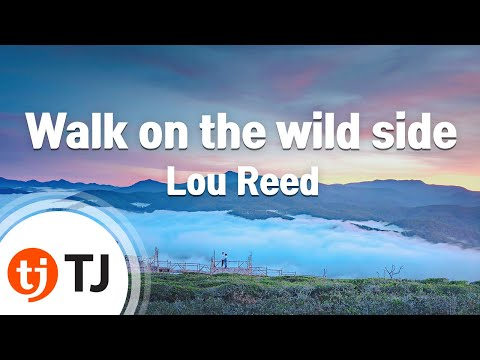 [TJ노래방] Walk on the wild side - Lou Reed ( - ) / TJ Karaoke