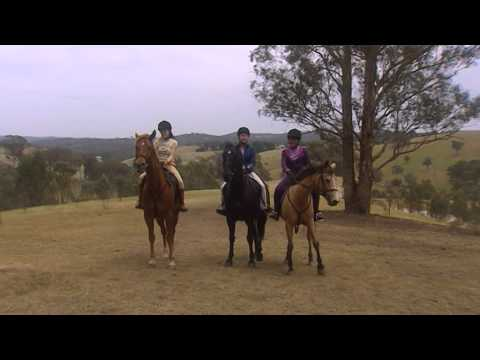 Saddle Club: Storm At Pine Hollow - Trailer