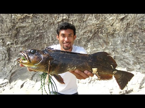 How To Catch Lingcod And BIG Fish With Swimbaits