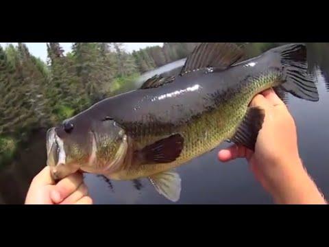 Fishing Michigamme Reservoir - U.P Of Michigan