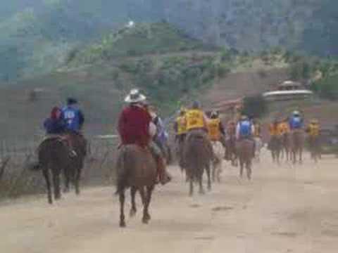 Resultado de imagen para Carrera de burros en chile