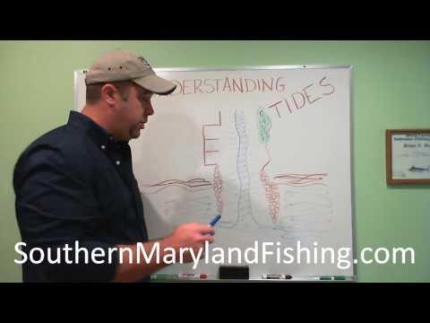 Understanding Tides & Fishing