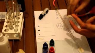 Определение группы крови и резус-фактора